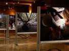 'Bursa Ulu Şehir' fotoğraf sergisi