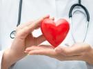 Geçen sene 7 bin 704 organ ve doku nakli gerçekleştirildi