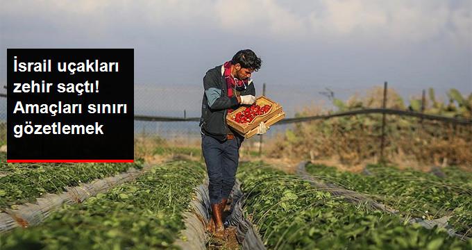 İsrail Gazze'ye Kimyasal İlaç Püskürtüyor!
