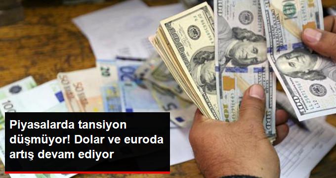 Dolar ve Euronun Artışı Devam Ediyor