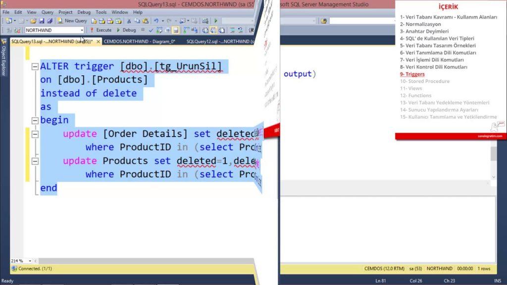 SQL Sunucusunun Dili Nasıl Değiştirilir?