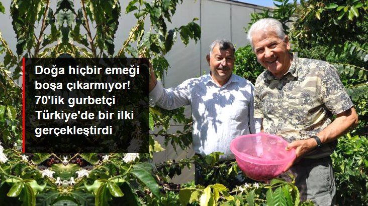 Gurbetçi Vatandaş Kahve Ağacı Yetiştirip Meyvesini Üretmeyi Başardı