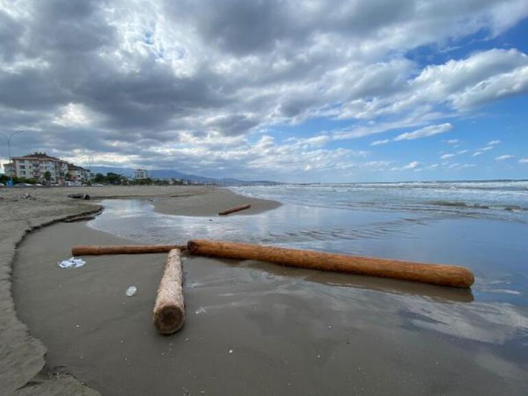 Selde sürüklenen tomruklar, Karadenize yayılıyor